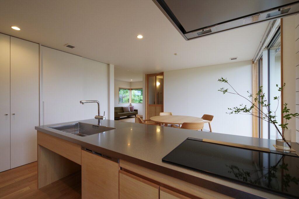 のびやかな風景に建つ片流れ屋根の家